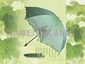 變色雨傘 透明雨傘 廣告雨傘