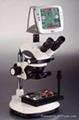 视频体式显微镜