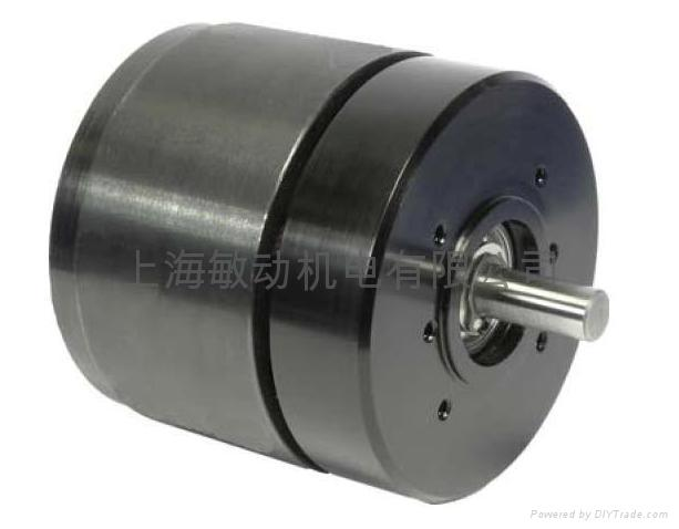 Coreless Motor Bldc Motor Bmp067 0210 China
