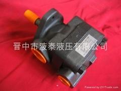 V20高性能液壓葉片泵