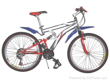 Mountain bicycle  1