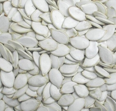 Snow White Pumpkin Seeds QL-10