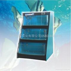 海鲜池鱼缸