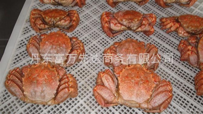 North Korea sea food 3