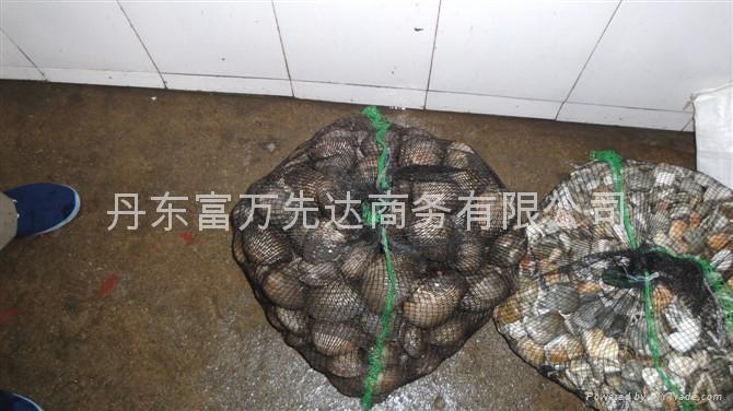 North Korea sea food 4