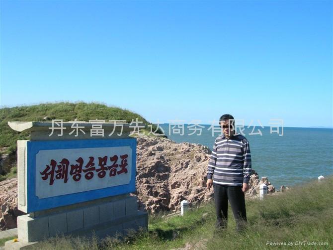 North Korea sea food 5