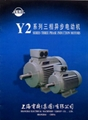 Y2 SERIES THREE PHASE INDUCTION MOTORS