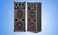 professional sound sytem 1