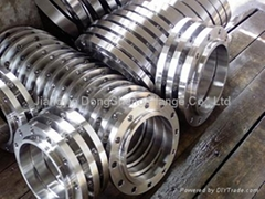 Jiangyin Dongsheng Flange Co.LTd
