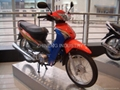 Asian Tiger Motorcycle
