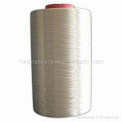 Polypropylene High Tenacity Yarn