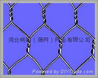 河北明陽(篩網)重型六角網、石籠網
