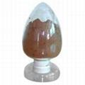 Rhodiola P.E(Hanzhong TRG Biotech Co.