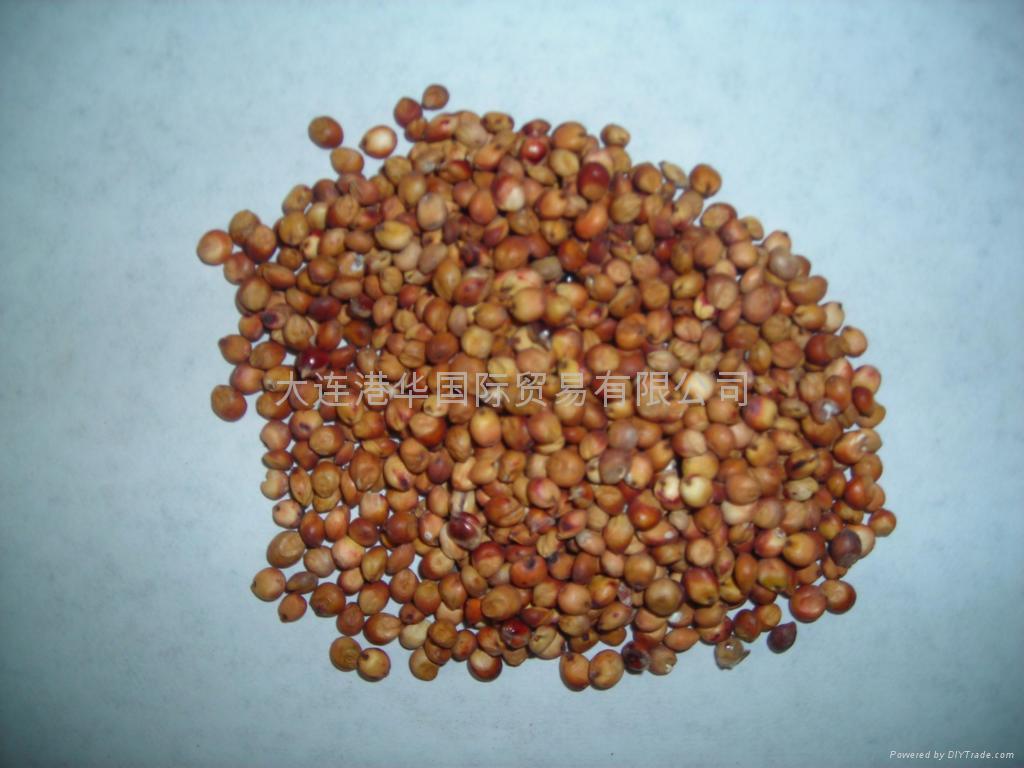 yellow millet rice 4