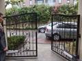 电动庭院门 1
