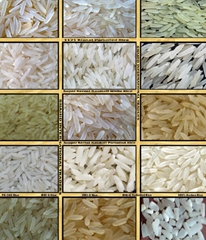 Variety of Pakistani Rice