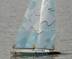 RC Sailboat Hawaii 1000