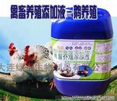 鸡养殖微生物添加液