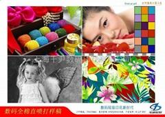Digital Inkjet Textile Printing