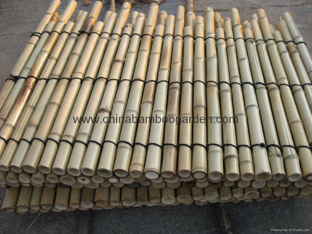 Bamboo Fence Panel Cbg China Manufacturer Household