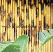 Smoked sandiego kenji  bamboo fence