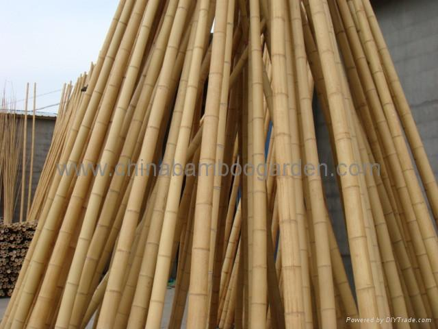 Bamboo cane pole stake cbg china manufacturer for Uses for bamboo canes