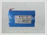 专业供应锂电池组