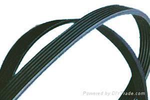 Ribbed Belt 1