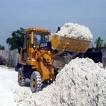 KAOLIN POWDER for PAIN,RUBBER AND PLASTIC