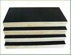 black film-faced plywood