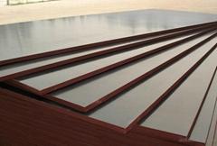 棕膜建筑覆膜板