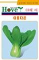 韩国青梗菜品种--华锦