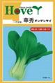 日本青梗菜种子--华绣