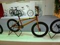 12inch brightly children bike 5