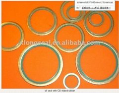 oil seal with OD ribbed rubber