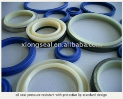 oil seal pressure resistant with protective lip standard design