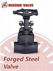 Forged steel gate/globe valve/valves