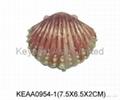 Shell jewelry box KEAA0954-1