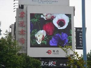 outdoor and indoor led display 1