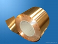 Phosphor Bronze Rods/Strips/Sheets/Wires (C51000 & C54400)