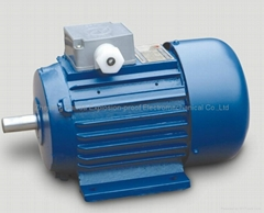 YY asychronous electric motor