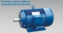 Y three phase asychronous electric motor