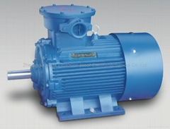 Explosion-proof Three Phase Asychronous Electric Motor