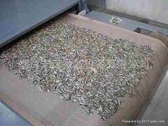 微波瓜子乾燥設備