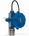 氟化氢泄漏检测仪