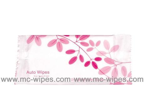 Auto Wipes 1