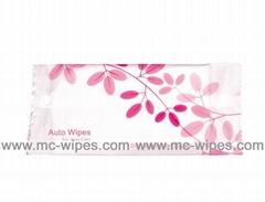 Auto Wipes