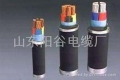 長期供應陽谷電纜