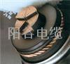 长期供应中国山东阳谷电缆