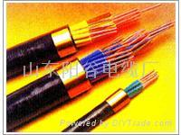 长期供应阳谷电缆 国家免检 中国驰名商标